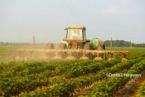 Texas Ag Law: Dicamba and 2,4-D Drift – First Rule: Document Everything