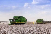 Cotton – Southeast – What Helped And Hurt Yields In 2016 – AgFax Harvest Survey Report