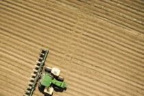 Texas High Plains: Soils Too Cool for Cotton Planting, OK for Corn, Sorghum