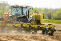 Welch on Grain: Corn Planting Intentions Just Under 90M Acres