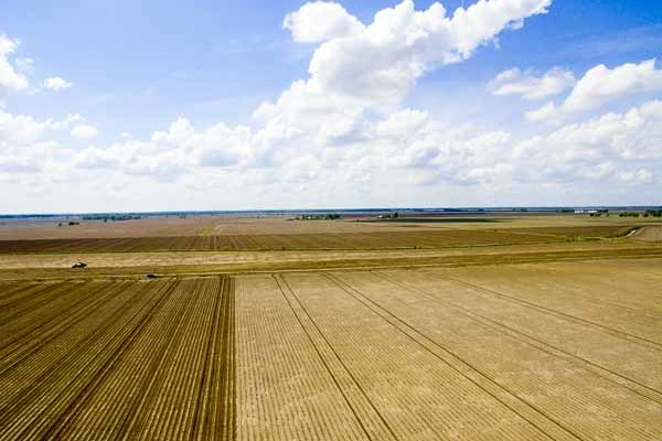 Iowa: Funding Cuts to Eliminate Leopold Center for Sustainable Agriculture – DTN