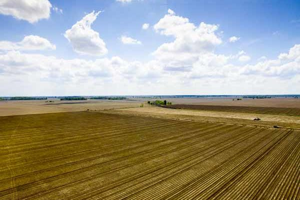 Farmland: It's Time for NASS to Change Method for Compiling Crop, Cash Rent Estimates – Study