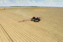 Cotton: Weed Control with a Step-by-Step Approach