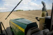 Illinois: Farm Income Trends Vary with Crop or Livestock Choice