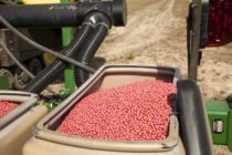 Virginia Soybeans: Seeding Rates – How Low Can We Go?
