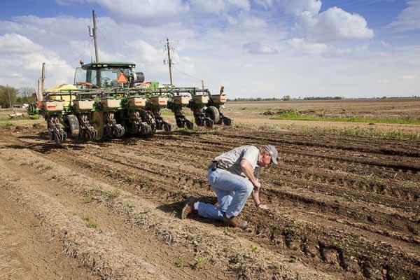 Farm Business: 7 Crops Show a Declining Cost of Production