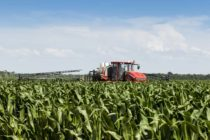 Corn, 2018: Expect an Average Loss of $115.33 Per Planted Acre – Commentary
