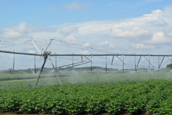 Oklahoma: Irrigation Conference, Altus, March 1