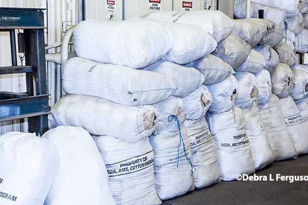 Cotton Outlook: U.S. Net Textile and Apparel Imports Steady in 2016