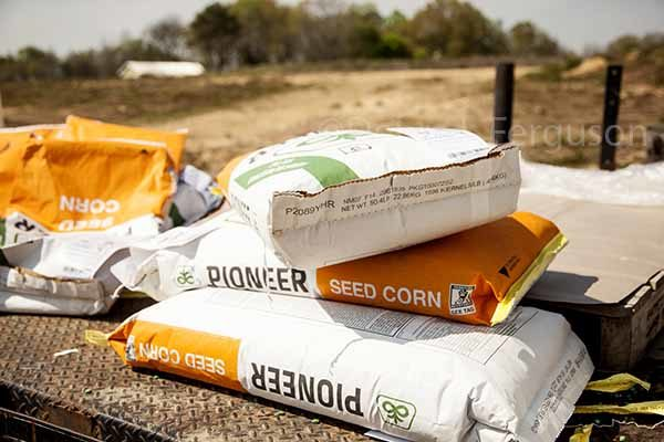 Alabama Corn: Factors to Consider When Selecting Seed