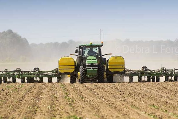 Cotton: PhytoGen TRiO Seed Treatment Available for 2018 Planting