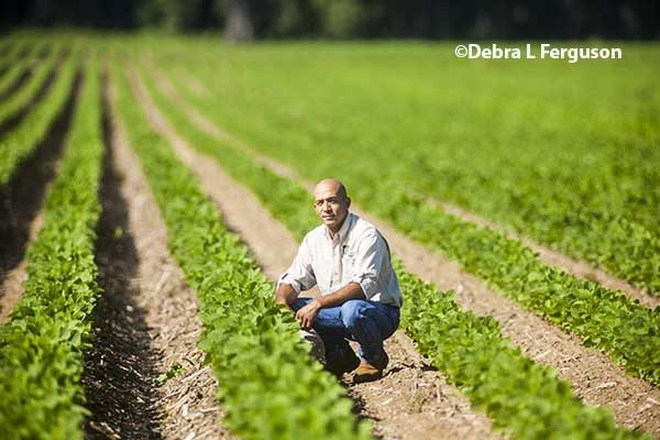 """Louisiana: Nik Morris Represents New Faces in Ag, """"Learn and Grow"""" – DTN"""