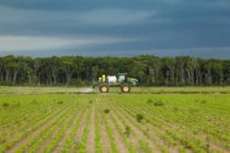 Monsanto Sets Dicamba Training Events, Opportunities