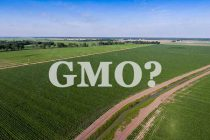 GMO Label: Ag and Food Groups Push for Deal Before July 1 – DTN