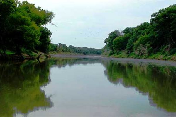 WOTUS Rollback – Senators Ask EPA to Extend Comment Period – DTN