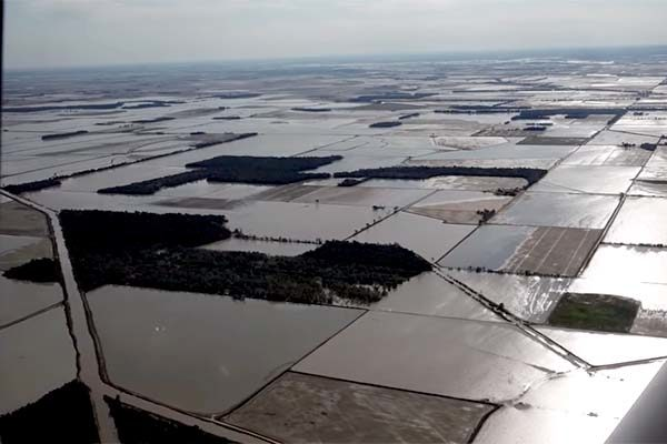 Arkansas Flooding: Replanting but Too Late for Many Rice Acres – DTN