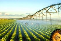 Florida: Variable Rate Pivot Irrigation – Video