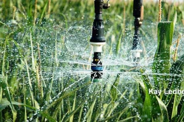 Oklahoma irrigation conference weatherford march 8 agfax oklahoma irrigation conference weatherford march 8 sciox Images