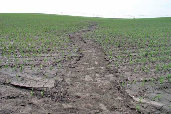 Nebraska Research: Manure Used to Help Reduce Erosion and Runoff – 4 Lessons