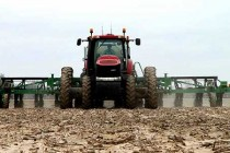 Texas Field Reports: Corn Planting Underway with Unusually Warm Weather