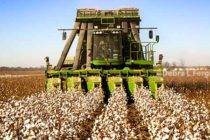 Cottonseed Proposal, FY18: Details You Need to Know About Generic Base