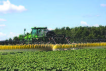 Cotton: 12 States Approve Enlist Weed Control