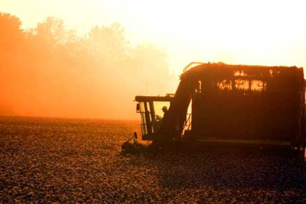DTN Cotton Close: Finishes Ahead for 3rd Straight Week