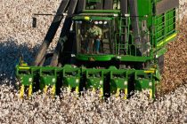 "Cleveland On Cotton: ""Dare we say, 'Dollar Cotton'?"""
