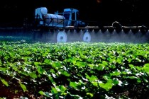 Dicamba Drift: Worst Time to Spray – Clear, Windless Evenings – DTN