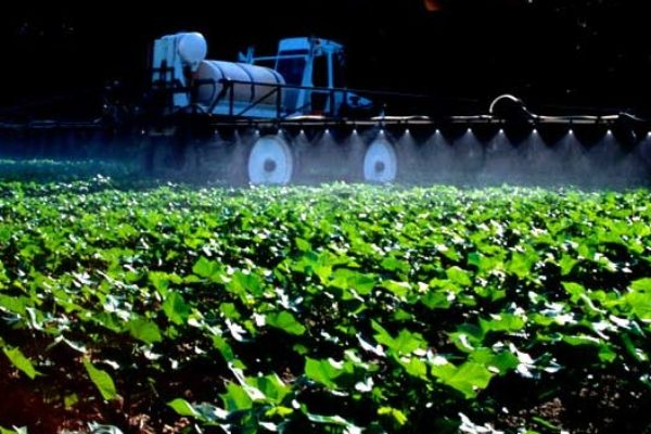 Texas Cotton: Don't Get Creative with Herbicide Tankmixing