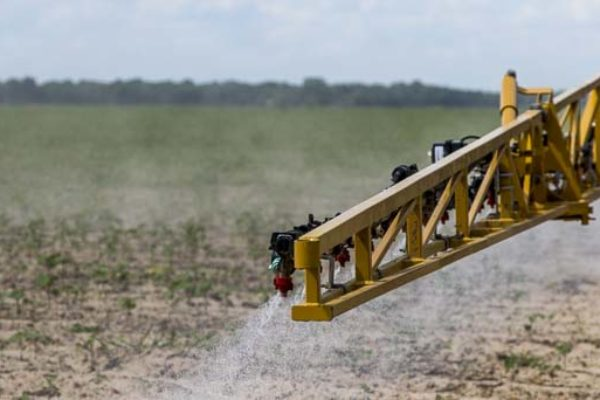 Dicamba Drift: Arkansas Researchers Find All Formulations Volatile; 876 Injury Reports