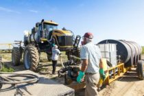Texas Cotton: TDA-Mandated Trainings for Dicamba Use