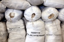 Cotton Market: Polyester Prices Hurting Market Share