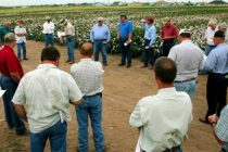 Texas: Rolling Plains Cotton and Precision Ag Field Day, Noodle, Oct. 12
