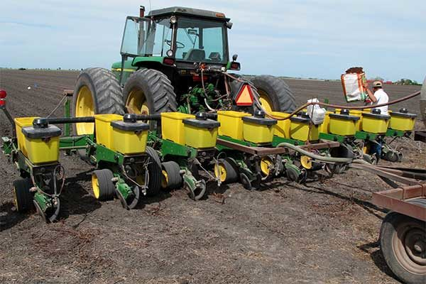 """North Carolina Cotton: Planting Conditions – Mostly """"Adequate"""" Or Better"""