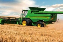 Wheat Market: USDA Expects Improved Yields Will Offset Decline in U.S. Acreage