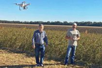 Weed Spotting By Drone: Moving Concept To A Practical On-Farm Tool