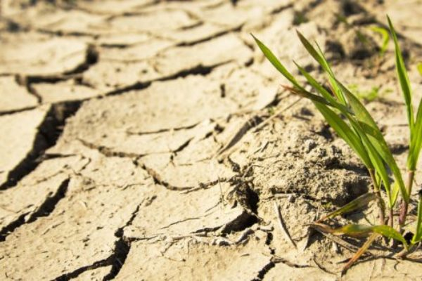 California: Imperial County Designated Natural Disaster Area from Drought