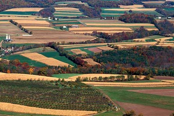 Indiana: Explore Sustainable Farming Funding Opportunities in Free SARE Webinar, Oct. 20