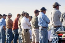 Texas: Tom Green County Cotton Field Tour, San Angelo, Oct. 5