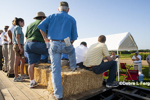 Texas: Randall County Ag Day and Crops Tour, Canyon, Aug. 30