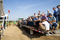 Kansas: Wheat Cover Crop Field Day, Brownell, May 19