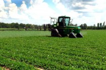 West Florida Crop Production Meeting On Tap For February 11, Jay