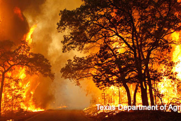 Wildfires: Farmers, Ranchers, Firefighters Prepare in Texas, Kansas, Oklahoma – DTN