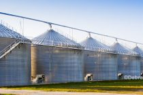 Farm Policy: If Price Management Makes a Comeback, Who Holds the Crop? – Commentary