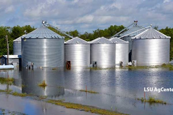 Climate-Smart Ag: U.S. Farm Groups, Neighbors Open Dialogue About Strategies – DTN