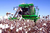 AgFax Midsouth Cotton: Wet-Weather Complications Ahead?