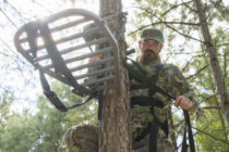 Mississippi Hunting: Take Extra Precautions When Using Tree Stands