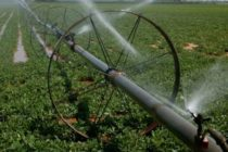 Oklahoma: Irrigation Conference, Weatherford, March 8