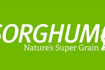 Sorghum Checkoff Launches New Branding Effort Aimed at Consumers